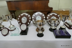 The trophies laid out before the dinner 3